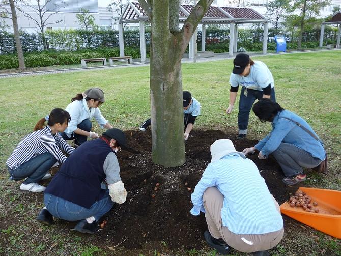 【10月30日ガーデンクラブの活動】_e0235911_1792813.jpg