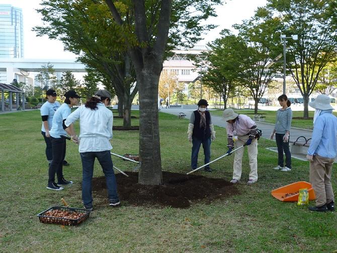 【10月30日ガーデンクラブの活動】_e0235911_1794641.jpg
