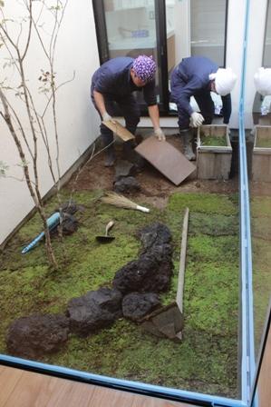 中庭の苔を敷きました_f0170331_17194233.jpg