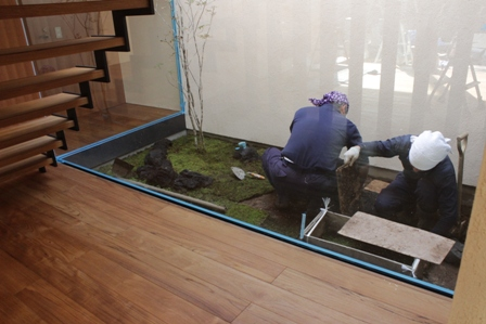 中庭の苔を敷きました_f0170331_17202643.jpg