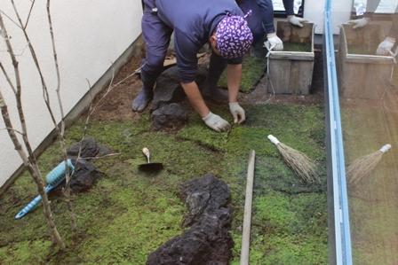 中庭の苔を敷きました_f0170331_1720546.jpg