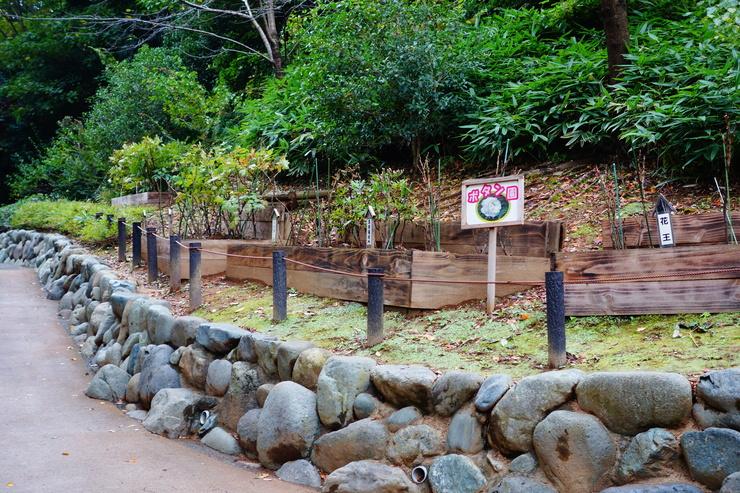 横浜市立野毛山動物園散策~FPD International 2013 その8_a0287336_22152958.jpg