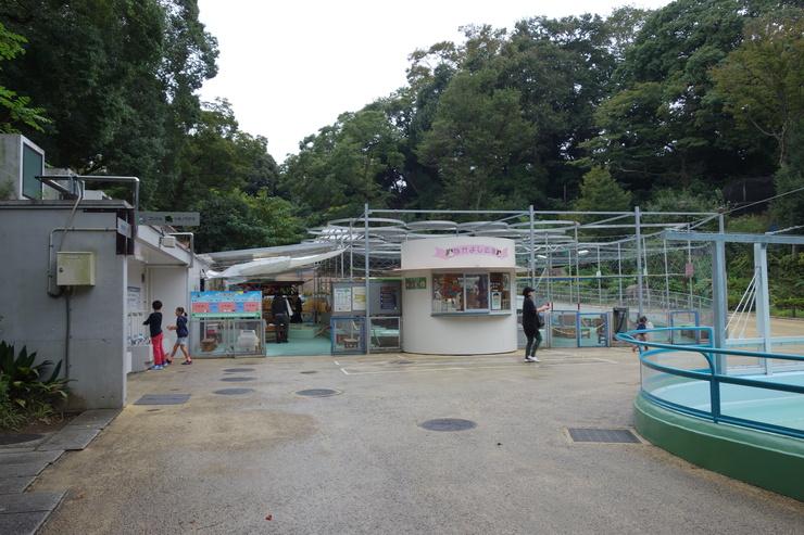横浜市立野毛山動物園散策~FPD International 2013 その8_a0287336_22175617.jpg