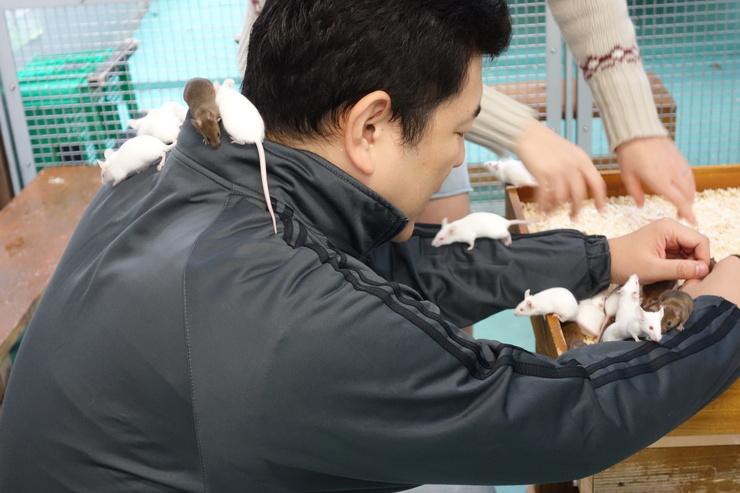 横浜市立野毛山動物園散策~FPD International 2013 その8_a0287336_2221050.jpg