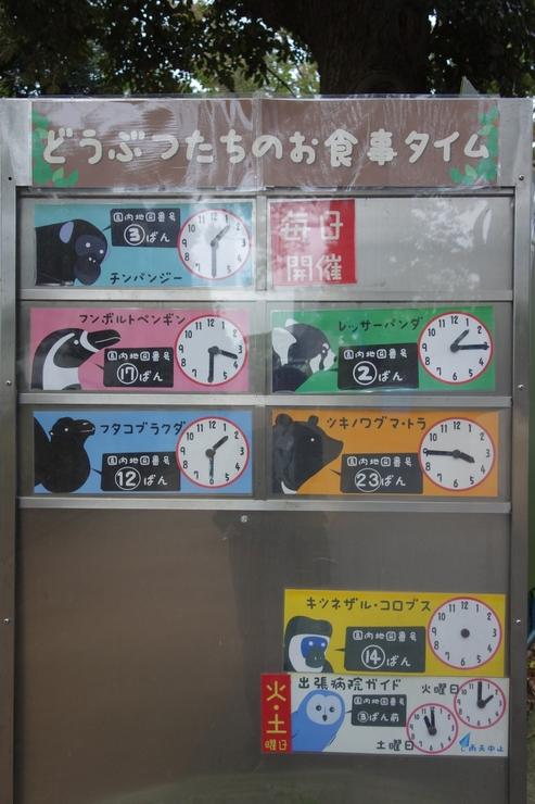 横浜市立野毛山動物園散策~FPD International 2013 その8_a0287336_224364.jpg