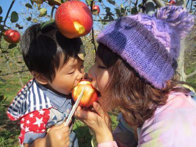 りんご狩り_a0111845_9421420.jpg