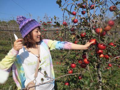 りんご狩り_a0111845_9421621.jpg