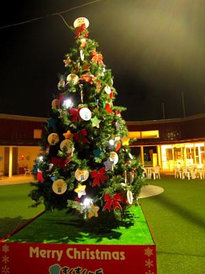 クリスマスツリー_c0141652_18195212.jpg