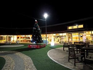 クリスマスツリー_c0141652_18204460.jpg