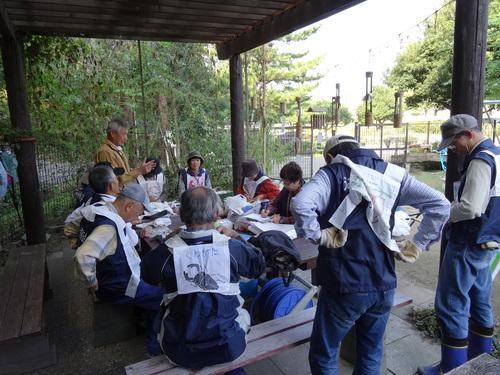 岸和田市立東光小学校遠足サポート   in  せんなん里海公園うみべの森_c0108460_19301938.jpg