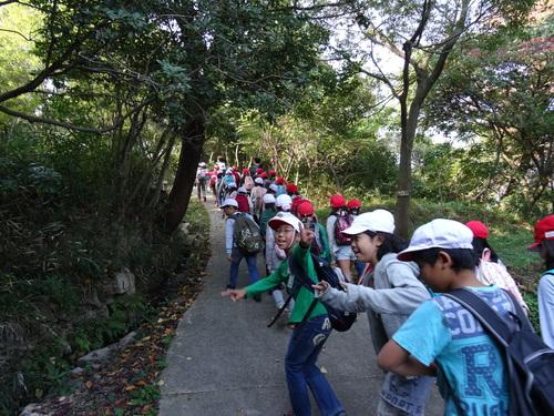 岸和田市立東光小学校遠足サポート   in  せんなん里海公園うみべの森_c0108460_19315645.jpg