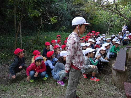 岸和田市立東光小学校遠足サポート   in  せんなん里海公園うみべの森_c0108460_19415786.jpg