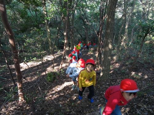 岸和田市立東光小学校遠足サポート   in  せんなん里海公園うみべの森_c0108460_19515528.jpg