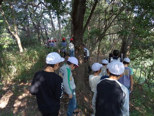 岸和田市立東光小学校遠足サポート   in  せんなん里海公園うみべの森_c0108460_19522062.jpg