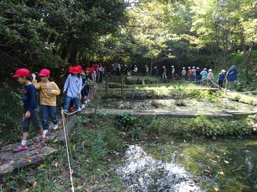 岸和田市立東光小学校遠足サポート   in  せんなん里海公園うみべの森_c0108460_19541343.jpg