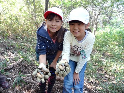 岸和田市立東光小学校遠足サポート   in  せんなん里海公園うみべの森_c0108460_1956123.jpg