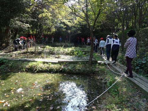 岸和田市立東光小学校遠足サポート   in  せんなん里海公園うみべの森_c0108460_20423323.jpg
