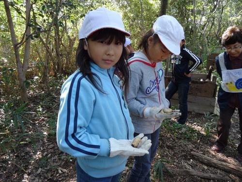 岸和田市立東光小学校遠足サポート   in  せんなん里海公園うみべの森_c0108460_20442228.jpg
