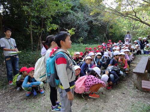 岸和田市立東光小学校遠足サポート   in  せんなん里海公園うみべの森_c0108460_20515913.jpg