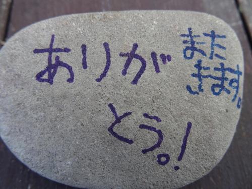 岸和田市立東光小学校遠足サポート   in  せんなん里海公園うみべの森_c0108460_20555145.jpg