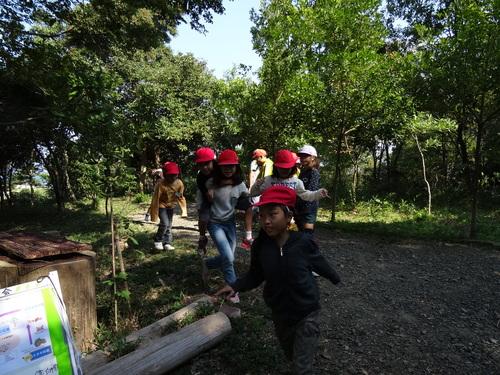 岸和田市立東光小学校遠足サポート   in  せんなん里海公園うみべの森_c0108460_2055683.jpg