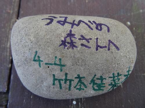 岸和田市立東光小学校遠足サポート   in  せんなん里海公園うみべの森_c0108460_2055790.jpg