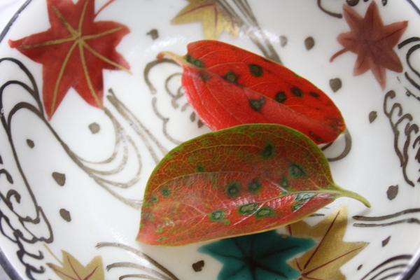 秋の料理〜_e0176392_23344270.jpg