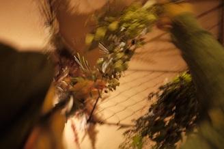 今日からスタート 「フボーと植物展 白Ⅱ」_f0226293_73087.jpg