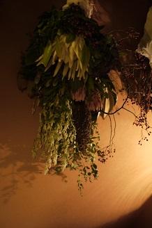 今日からスタート 「フボーと植物展 白Ⅱ」_f0226293_736125.jpg