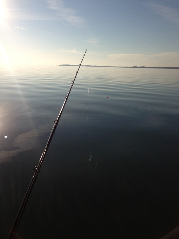 ゴビゾー君と晩秋のエリー湖に挑む!!_d0145899_23303991.jpg