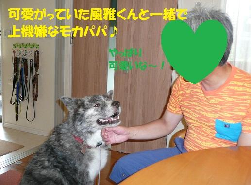 f0121712_15445187.jpg