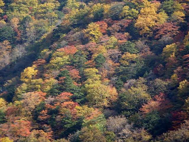 日本の名峰絶景探訪_d0073005_23242869.jpg