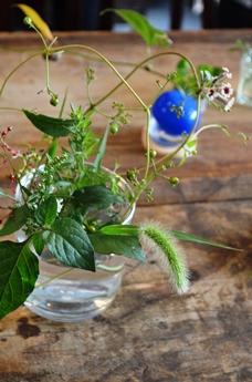 草祭りのご報告_d0263815_201142.jpg