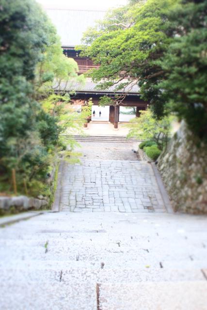 京都2日目。_c0175022_951272.jpg