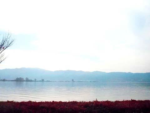 諏訪湖_d0127634_11531489.jpg