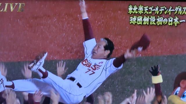 星野監督・田中投手・楽天イーグルス日本一おめでとう、神様はいた優勝だ!!、楽天イーグルスに優勝の栄冠!!_d0181492_22513546.jpg