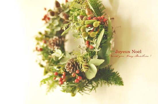 クリスマスの足音_d0174704_2324978.jpg