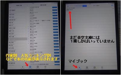 ランチ会&電子書籍&落花生ごはん_a0084343_1675749.jpg