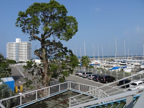 第32回岬町文化祭  in  海風館&淡輪公民館       by    (TATE-misaki)_c0108460_1504222.jpg