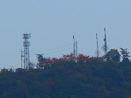 こんな紅葉は、いかがでしょう_e0175370_22484835.jpg