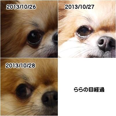 f0185804_163513.jpg