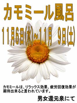 e0187507_1657450.jpg