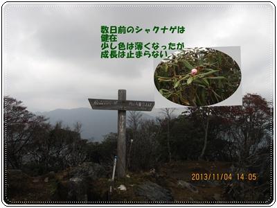 f0193521_11282476.jpg