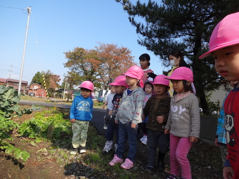 秋探しのお散歩_d0166047_14113377.jpg
