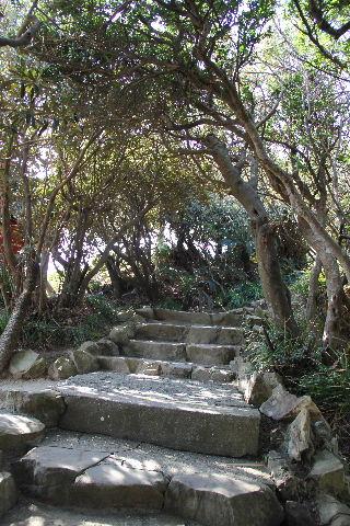 霧島と佐多岬の旅 (3) 九州・本土最南端の佐多岬へ_c0011649_14541655.jpg