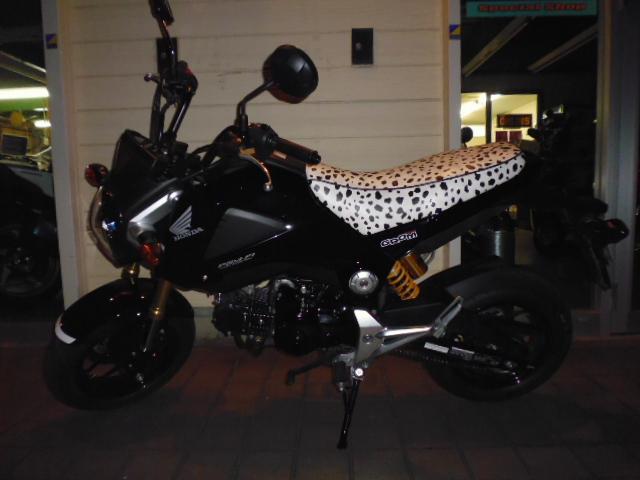 グロムのバイクザシート_e0114857_2021059.jpg