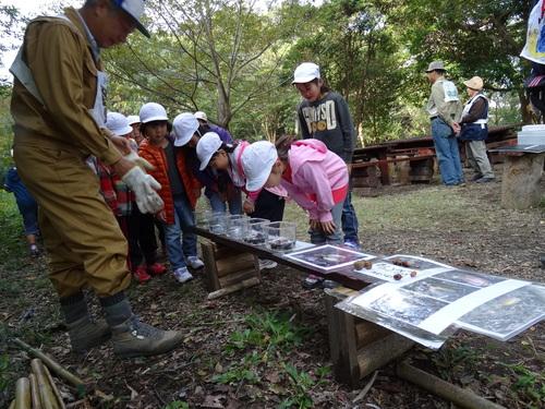 淡輪小学校1年生遠足サポート  in  うみべの森_c0108460_20525011.jpg