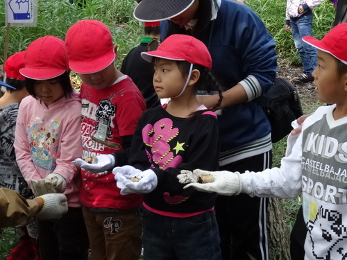淡輪小学校1年生遠足サポート  in  うみべの森_c0108460_20562977.jpg