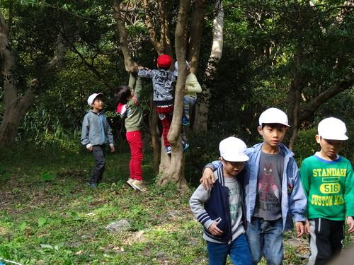 淡輪小学校1年生遠足サポート  in  うみべの森_c0108460_2128513.jpg