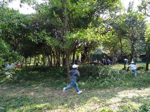 淡輪小学校1年生遠足サポート  in  うみべの森_c0108460_21355860.jpg